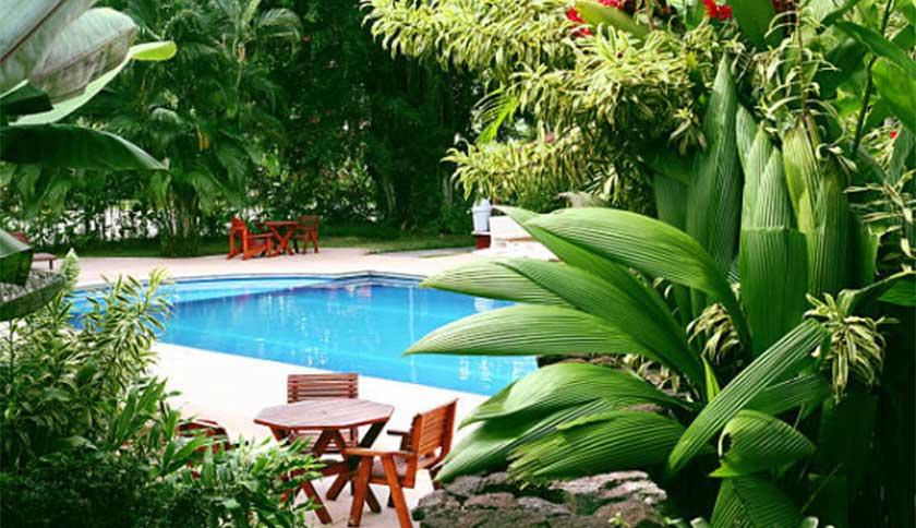 Landscaping in backyard Fibreglass Pool