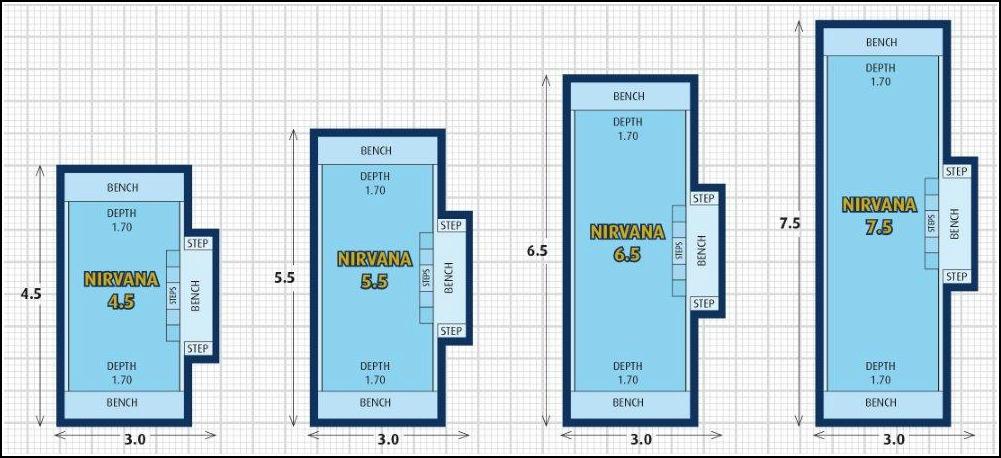 Nirvana Plunge Pool and Lap Pool Design Ideas